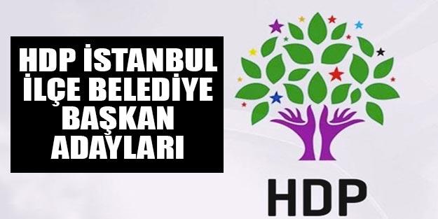HDP İstanbul ilçe belediye başkan adayları 2019