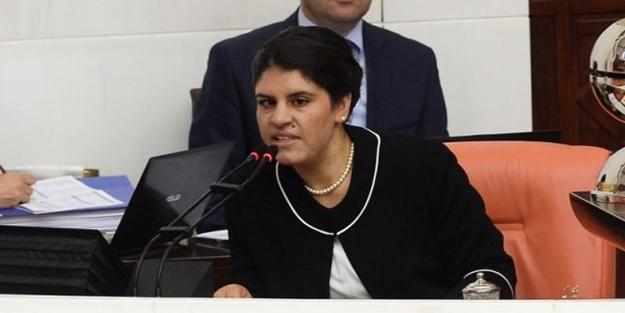 HDP'den MHP'ye Öcalan tepkisi