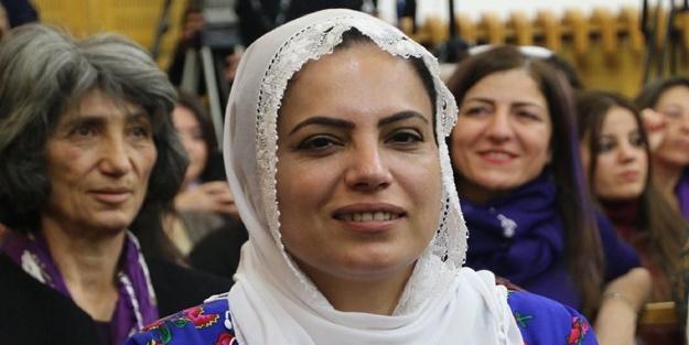 HDP'li vekilden evlat nöbetindeki acılı ailelere alçak hakaret