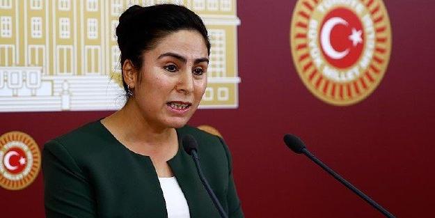 HDP'li vekilden terör örgütü YPG/PKK ile mücadele eden Suriye Milli Ordusu için skandal sözler!