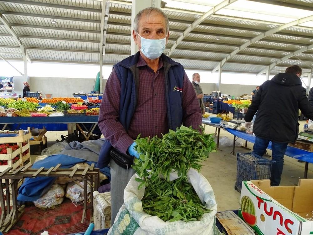 Hisarcık'ta bitkisel antibiyotik madımak otu tezgahlardaki yerini aldı
