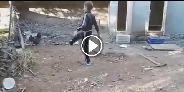 Horoza kafa tutan çocuğun sonu