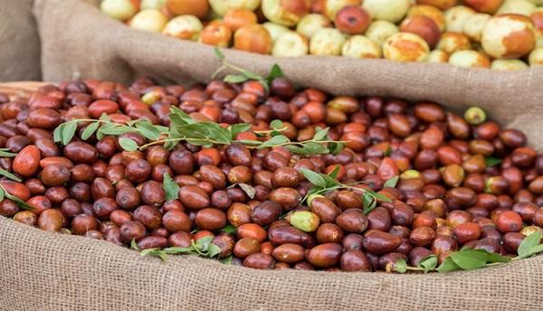 Hünnap neye iyi gelir? Hünnap meyvesinin faydaları nelerdir?