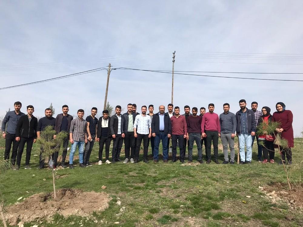 İdlib şehitleri anısına fidan dikildi