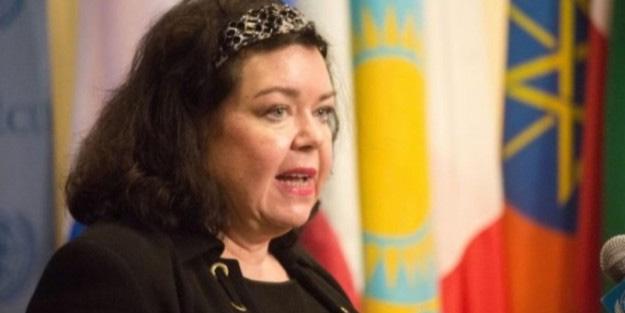 İngiltere'nin BM Temsilcisinden Türkiye açıklaması