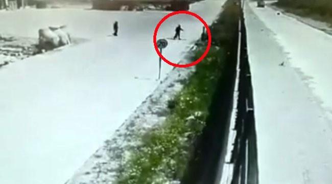 İşçilerin beslediği köpeği çitlerin üstünden kaldırıma fırlattı