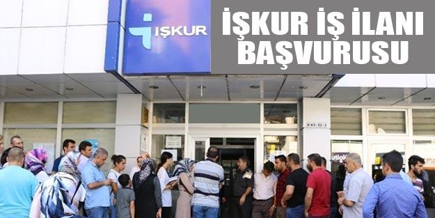 İŞKUR iş ilanları 2019 İŞKUR personel alım başvuruları