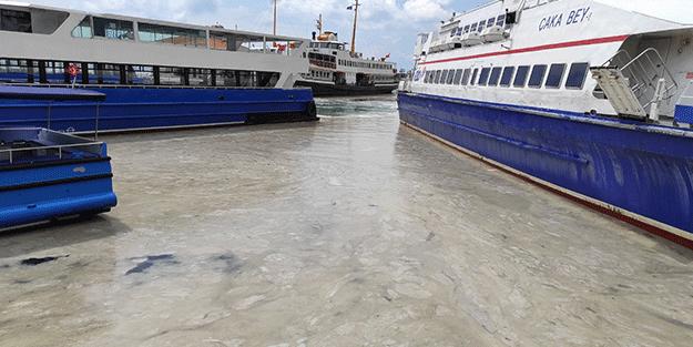 İstanbul Anadolu yakasında deniz salyası arttı