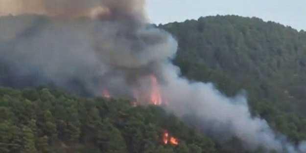 İstanbul'da büyük çaplı orman yangını!