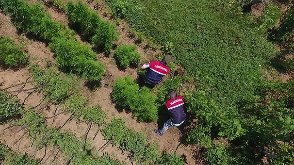 İstanbul'da Jandarmadan 'drone'lu uyuşturucu operasyonu