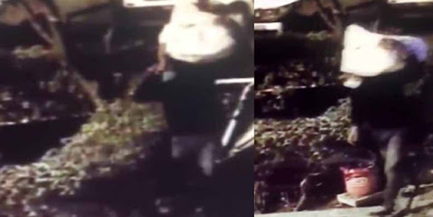 İstanbul'da 'kardan adam' hırsızlığı 'yok artık' dedirtti