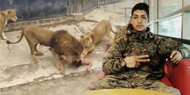 İşte bu yüzden kendini aslanlara yem etmiş!