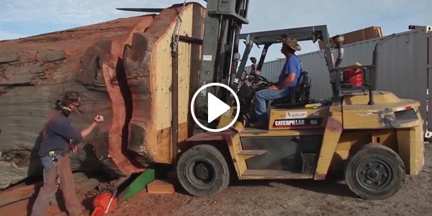İşte dünyanın en büyük odun kesme motoru