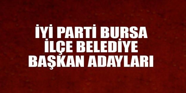 İYİ Parti Bursa ilçe belediye başkan adayları 2019