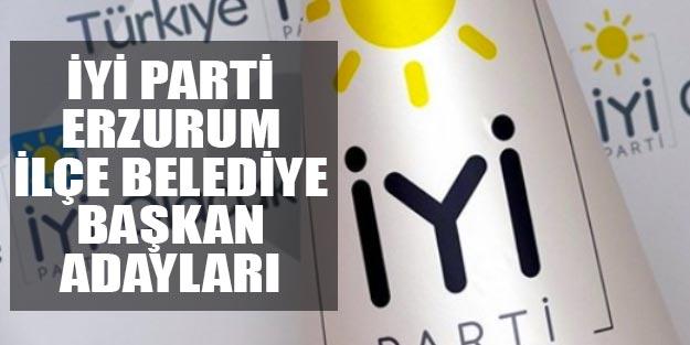 İYİ Parti Erzurum ilçe belediye başkan adayları 2019