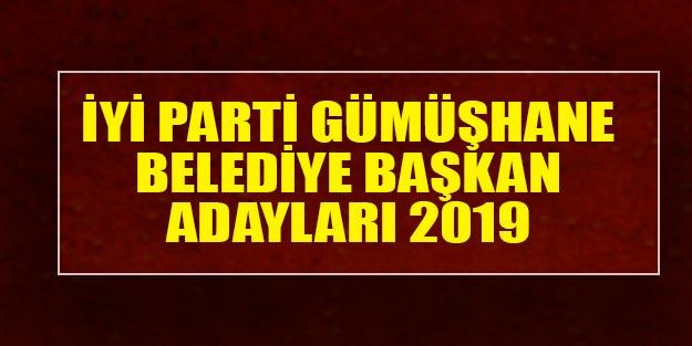 İYİ Parti Gümüşhane belediye başkan adayları 2019