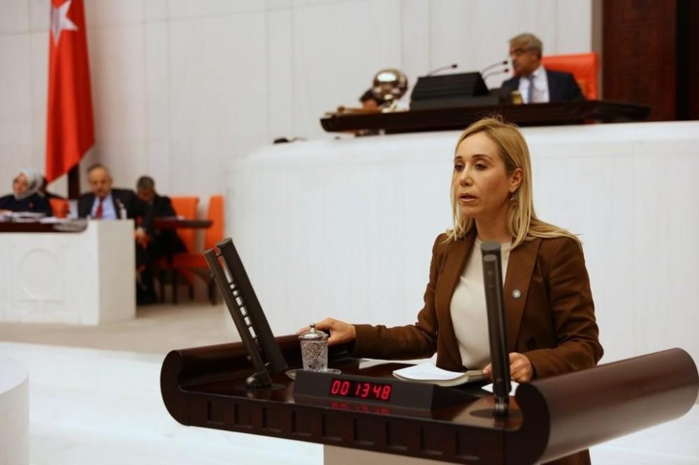 İYİ Partiden istifa eden milletvekili Çokal: