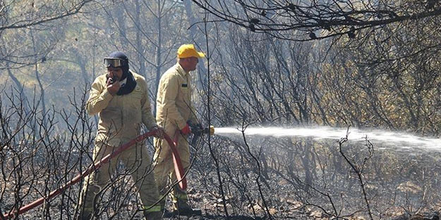 İzmir'deki orman yangınıyla ilgili bir kişi gözaltına alındı