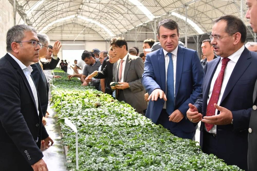 Japonlardan Bafra'ya tarım yatırımı