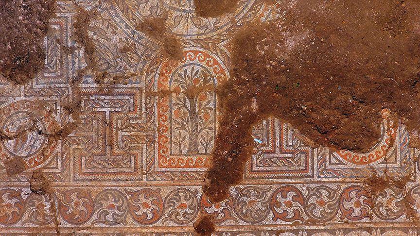 Kaçak kazıda bulunan mozaik açığa çıkarılıyor