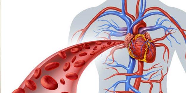 Kan dolaşım bozukluğu için hangi doktora gidilir
