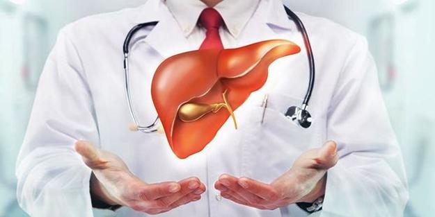Karaciğer hastalıklarına hangi bölüm bakar?