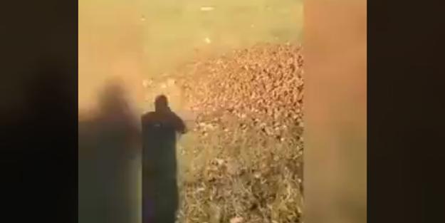 Patatesleri yollara dökmüşler!