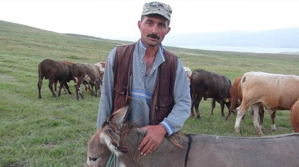 Kars'ta işkenceye maruz kalan eşekler koruma altında!