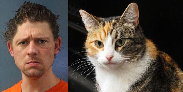 Kedi katiline 4 yıl hapis