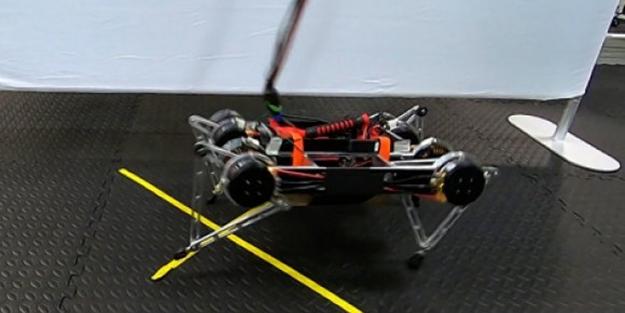 Kendi kendine yürümeyi öğrenen robot üretildi