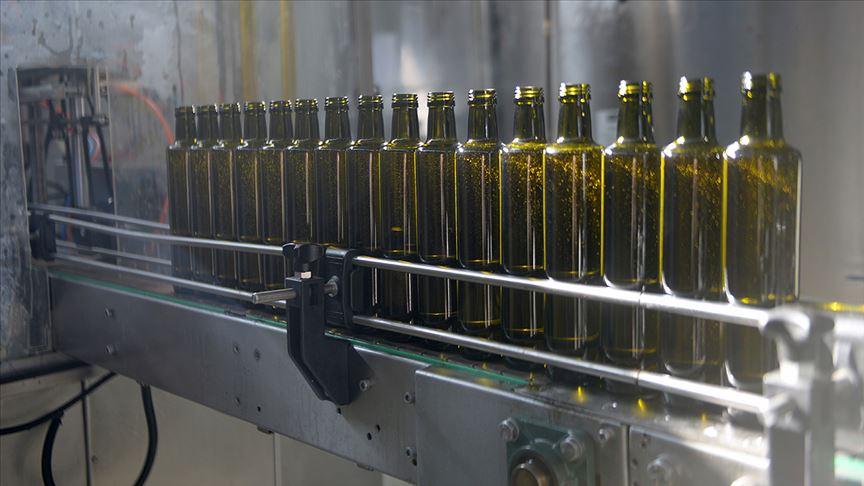 Kilis zeytinyağı ilk defa kendi markasıyla Kanada'ya ihraç edildi