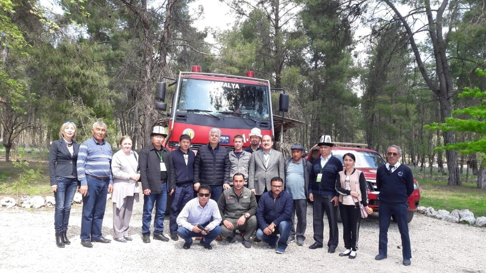 Kırgız ve Rus heyet yangın sonrası ağaçlandırılan alanları inceledi