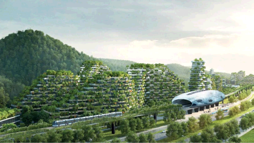 Kirli hava ile başa çıkamayan Çin'e Orman Şehri önerisi
