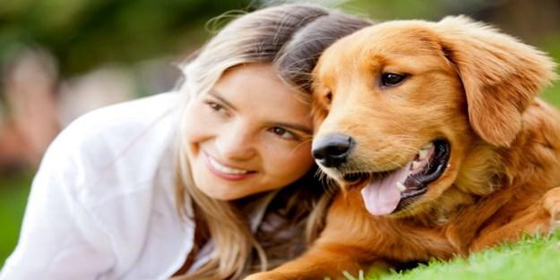 Köpek salyası hakkında bunları biliyor musunuz?
