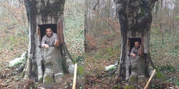 Koronavirüsten korunmak için ağacı oydu