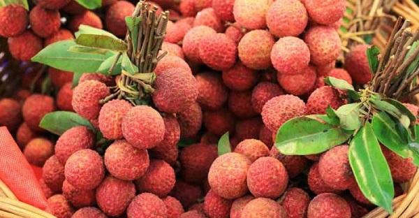Kral meyvesi nedir? Kral meyvesinin faydaları nelerdir?
