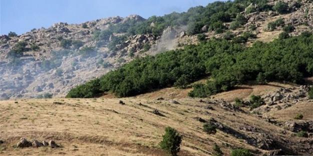 Lice'de silahlı PKK'lılar yakalandı