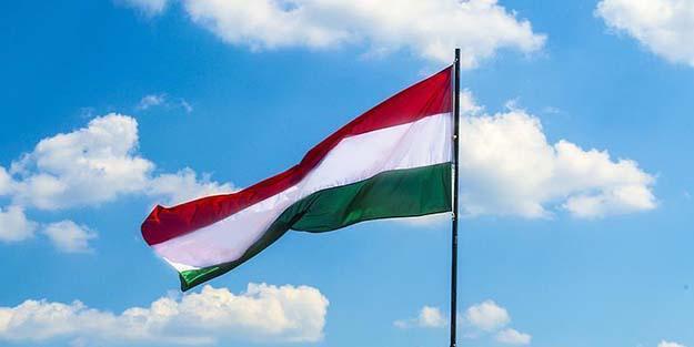 Macaristan'dan Alman Cumhurbaşkanı Steinmeier'e tepki