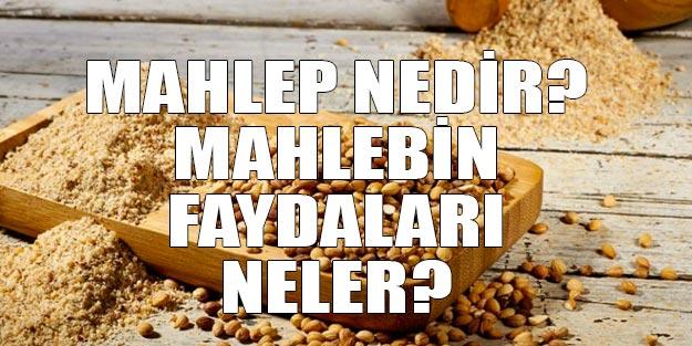 Mahlep nedir? Mahlebin saymakla bitmeyen faydaları neler? Mahlepli kurabiye nasıl yapılır?