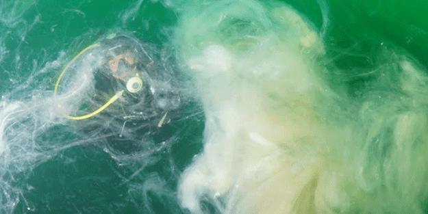 Marmara Denizi'ne dalış yapıldı! 'Söylemek isterdim ama mümkün değil'