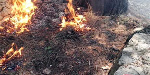 Marmaris'teki yangının sebebi belli oldu! Bakın kim çıkarmış
