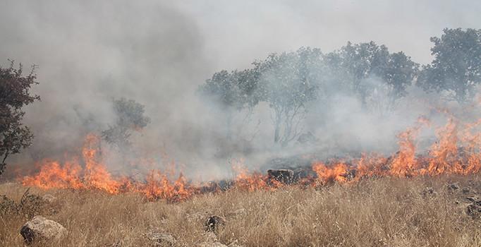 Midyat'ta ormanlık alanda çıkan yangın devam ediyor