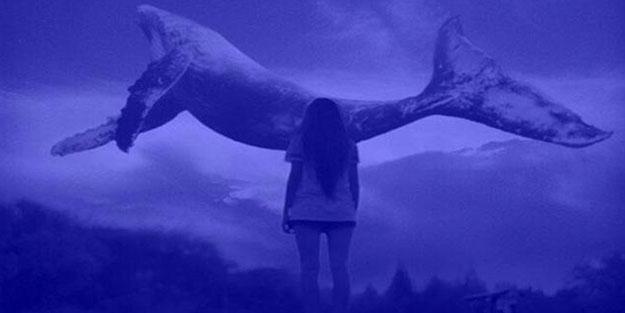 Milli Eğitim Bakanlığı harekete geçti! 'Mavi Balina' ve 'Momo' önlemi