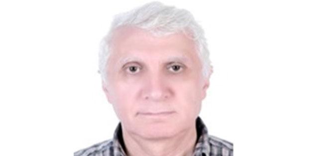 Mısır Medeniyet Araştırmaları Merkezi Genel Müdürü Dr. Mahmud Abdullah Akif, dünyaya çağrı yaptı
