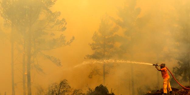 Muğla'da feci yangın!