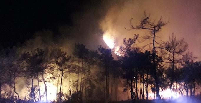 Muğla'nın Marmaris ilçesinde orman yangını: 10 hektar alan kül oldu