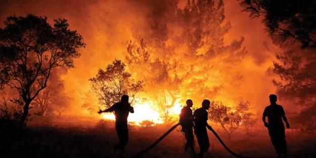 OGM sevindiren haberi duyurdu: 8 orman yangını kontrol altına alındı