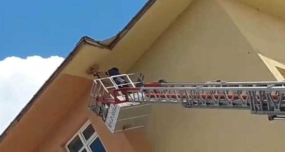Okulun çatısında ipe dolanan karga kurtarıldı