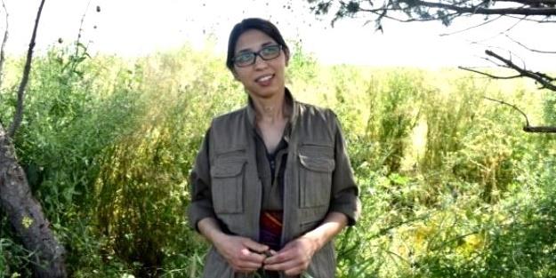 Öldürülen terörist 'Ceren Güneş'in sicili ortaya çıktı