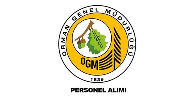 Orman Genel Müdürlüğü personel alımı başvuruları başladı   OGM başvuru nasıl yapılır?